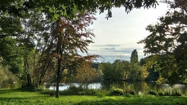 Castle parc