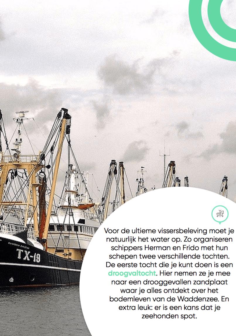 boottocht en garnaalvissen Texel