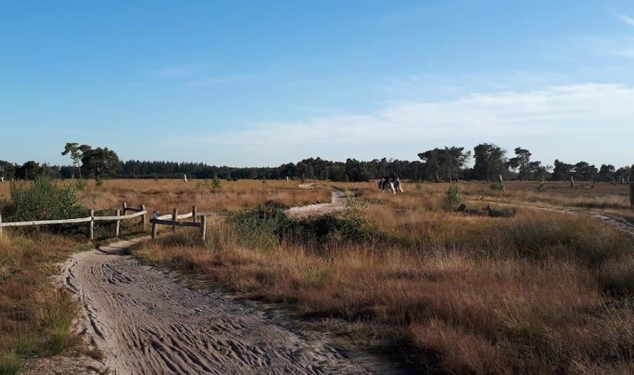 Strabrechtse Heide wandelen Brabant