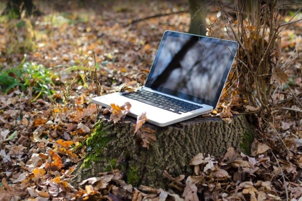 thuiswerk vakantie laptop in het bos