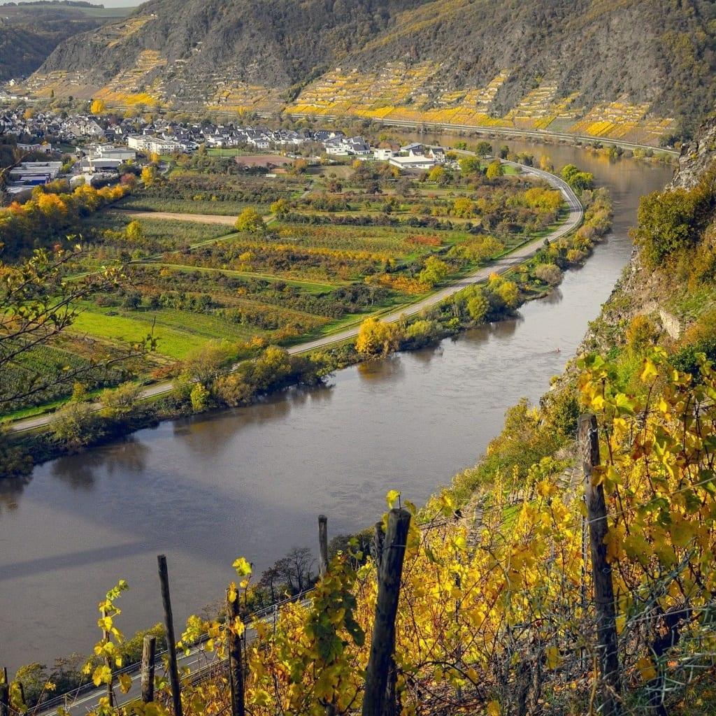 wijngaarden moezel