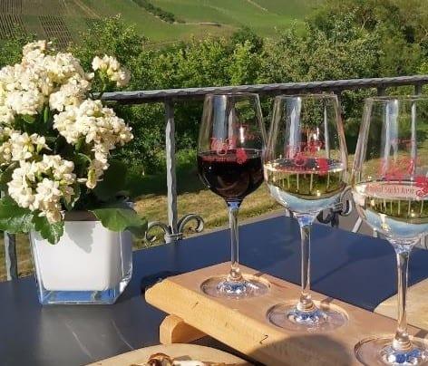 wijn proeven